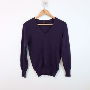 Ann Taylor V Neck Purple Pullover Sweater